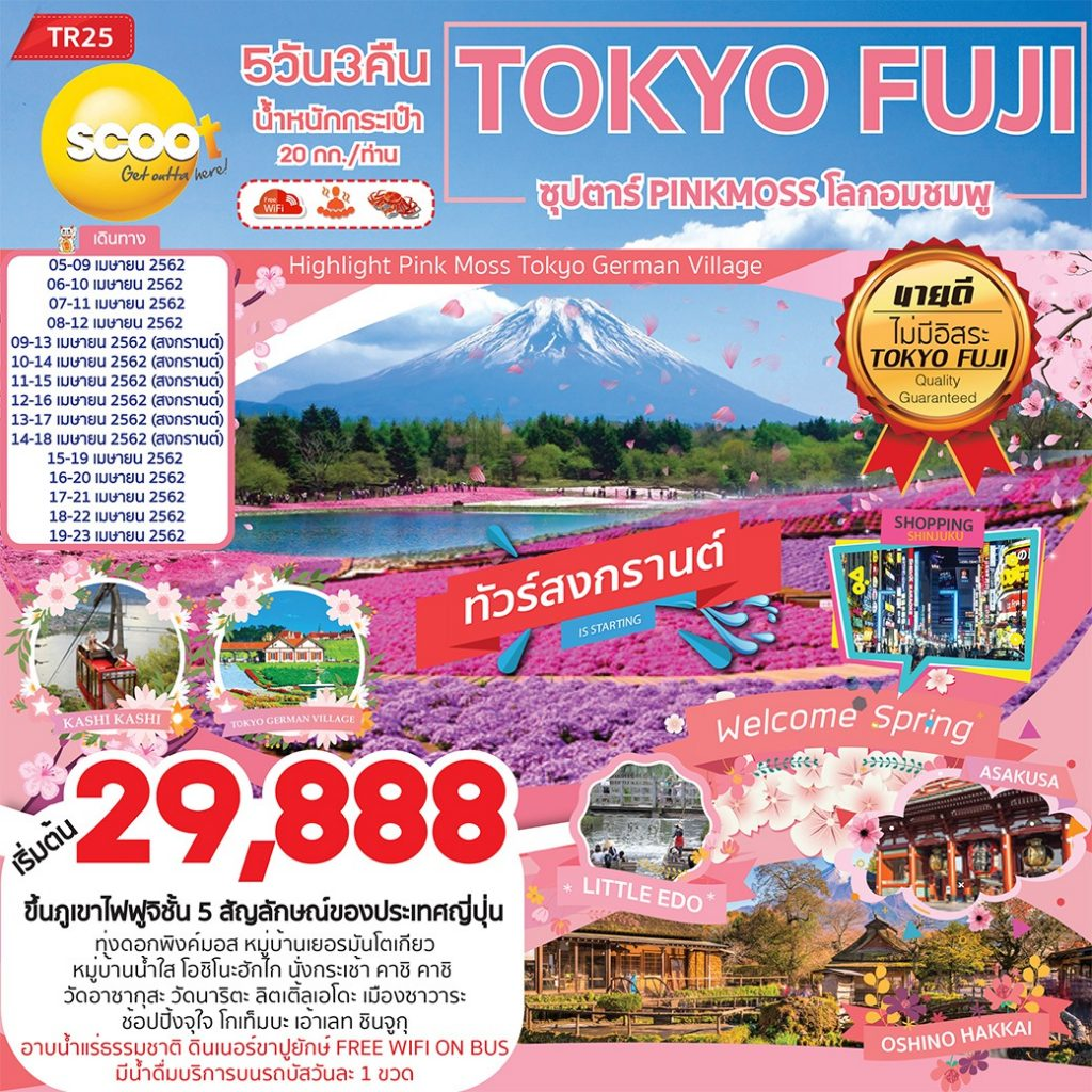 TOKYO FUJI ซุปตาร์ PINKMOSS โลกอมชมพู 5D3N